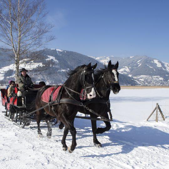 https://gasthofpost-bruck.at/de/wp-content/uploads/2016/02/winter-pferdeschlittenfahrt-in-zell-am-see-kaprun-540x540.jpg