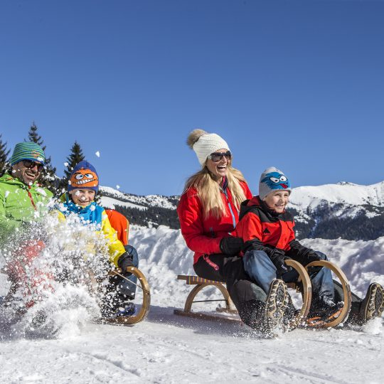 https://gasthofpost-bruck.at/wp-content/uploads/2016/02/winter-schlittenfahrt-mit-der-ganzen-familie-540x540.jpg
